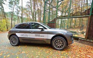Тест Porsche Macan — сила Тигра и эмоции через край